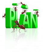 ants building word plan executing of ideas realize dreams