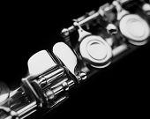Flute - particular
