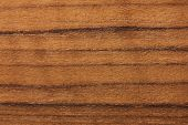 Teak wood (Tectona grandis)  wood texture. Raw unfinished surface. Prized wood for durability and wa poster
