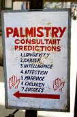 foto of palmistry  - Palmistry consultant panel - JPG