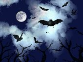 bats flying in the dark cloudy sky of halloween