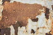 Rusty White Metal Background, White Metal Plate With Traces Of Rust, Metal Corroded Texture, Rusty M poster