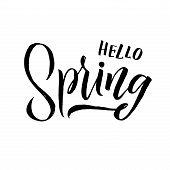 Spring. Trendy Script Lettering Design Hello Spring. - Vector poster