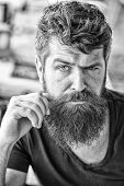 Hipster Brutal Guy Twisting Mustache. Man Confident Brutal Bearded Macho. Grooming And Barber Shop C poster