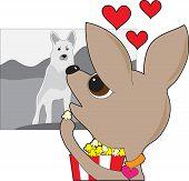 Chihuahua Movie
