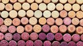 Background Of Used Wine Corks.  Wine Corks From White And Red Wine Arranged In Rows By Color. Wine S poster