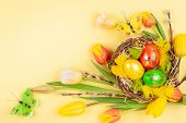 Easter composition with colorful Easter eggs in nest, spring flowers and branches of pussy willows o poster