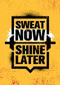 Sweat Now. Shine Later. Inspiring Workout And Fitness Gym Motivation Quote Illustration Sign. poster