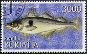 BURYATIA - CIRCA 1997