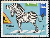 CUBA - CIRCA 1970: A stamp printed in Cuba shows illustration for traffic regulations Circa 1970.