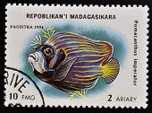 MADAGASCAR - CIRCA 1994: stamp printed in Madagascar dedicated to fish shows pomacanthus imperator c