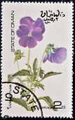 OMAN - CIRCA 1977: stamp printed in Oman dedicated to flowers shows viola cornuta circa 1977