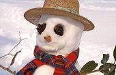 Styling Snowman