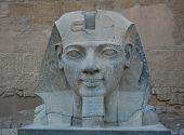 picture of ramses  - Ramses II Statue In Luxor Temple - JPG