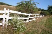 Fence On The Feild