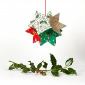 Butcher's Broom And Christmas Decoration, Isolated