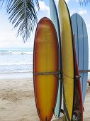 Surf Boards On Beach Kuta Bali