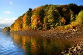 Acenic Autumn Landscape