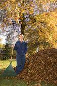 Raking Leaves Teen Boy Next To Leaf Pile
