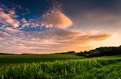 Sunset Clouds Over Corn Fields In Rural Southern York County, Pennsylvania.