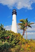 Cape Florida Light lighthouse with Atlantic Ocean and palm tree at beach in Miami with blue sky and
