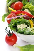 image of rocket salad  - Salad with cherry tomatoes goat - JPG