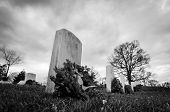 stock photo of arlington cemetery  - Tombstone in Cemetery  - JPG