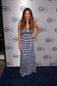 LOS ANGELES - 24 de JUL: Moon Bloodgood llega a la fiesta de aniversario 25 de TNT en el Beverly Hilton