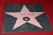 LOS ANGELES - JUL 25:  Peter Falk Star at the Peter Falk Posthumous Walk of Fame Star ceremony at th
