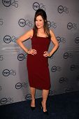 LOS ANGELES - JUL-24: Mary McDonnell kommt bei TNT 25. Jubiläums-Party im Beverly Hilton