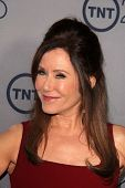 LOS ANGELES - JUL 24:  Mary McDonnell arrives at TNT's 25th Anniversary Party at the Beverly Hilton