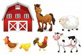 foto of barn house  - Illustration of the farm animals on a white background - JPG