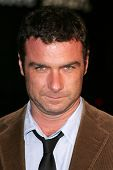 LOS ANGELES - NOVEMBER 11: Liev Schreiber at the United States Premiere of