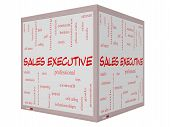 Sales Executive Word Cloud Concept On A 3D Cube Whiteboard