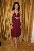 BEVERLY HILLS, CA - DECEMBER 11: Bahar Soomekh at the Annual ACLU Bill of Rights Awards Dinner at Re