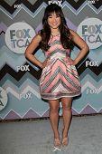 Jenna Ushkowitz at the FOX Winter TCA All-Star Party 2013, Langham Huntington Hotel, Pasadena, CA 01-08-13