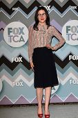 Shannon Woodward at the FOX Winter TCA All-Star Party 2013, Langham Huntington Hotel, Pasadena, CA 0