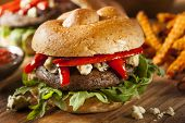 picture of veggie burger  - Healthy Vegetarian Portobello Mushroom Burger with Cheese and Veggies - JPG