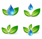 Leaf And Water Drop Set