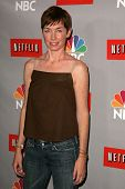 PASADENA - JULY 22: Julianne Nicholson at the NBC TCA Press Tour at Ritz Carlton Huntington Hotel on
