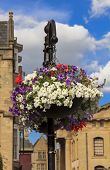 Flowerpot With Colorful Flowers Hanging From Ornamental Lantern With Historic Buildings And Blue Sky