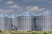 metal agriculture storage silos in Colorado farmland
