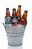 Alaskan Brewing Beer In Ice Bucket