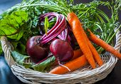 Fresh organic carrots and beetroot