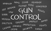 Gun Control Word Cloud