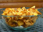 Bowl Full Of Chanterelles