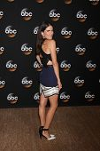 LOS ANGELES - JUL 15:  Karla Souza at the ABC July 2014 TCA at Beverly Hilton on July 15, 2014 in Be