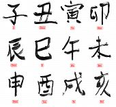 Collection of Chinese calligraphy writing words of twelve Earthly Branches, isolated on white.