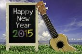 stock photo of ukulele  - Ukulele with blue sky and Blackboard 2015 text on the grass - JPG