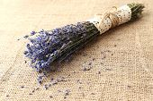 Lavender flowers on sackcloth background